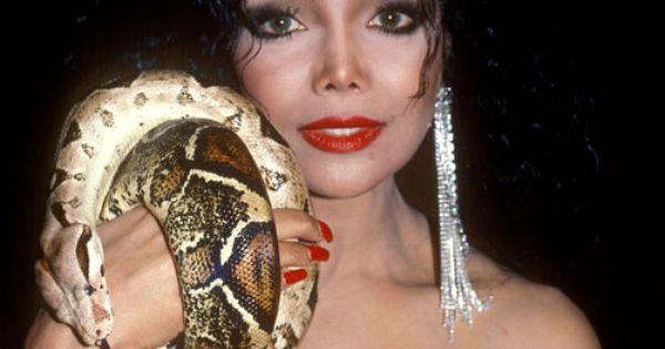 La Toya Jackson with her snake | I Love The Jackson Family ...