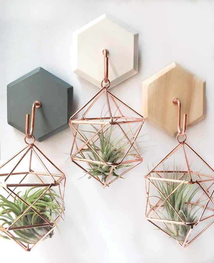 Hanging House Plant Pots