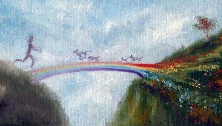 Rainbow Poem Bridge Dogs Crossing