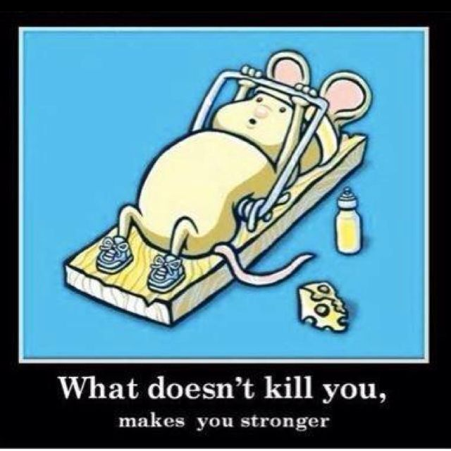 Kill Mouse Makes Stronger Doesnt You You What