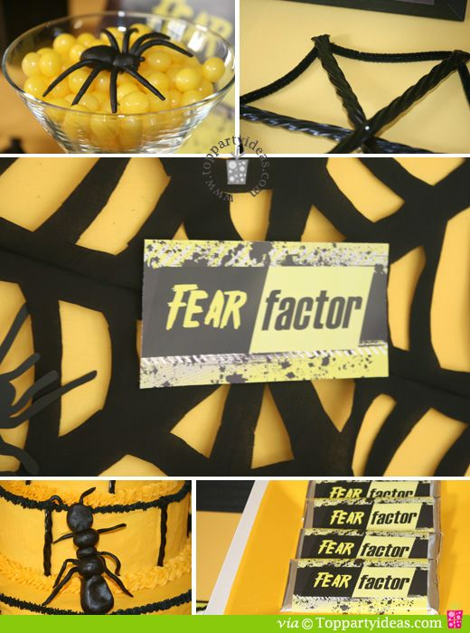 Fear Factor Party Spiderweb And Bugs Party Ideas