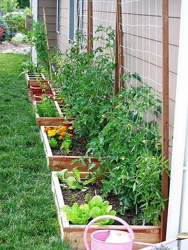 Raised Garden Against House