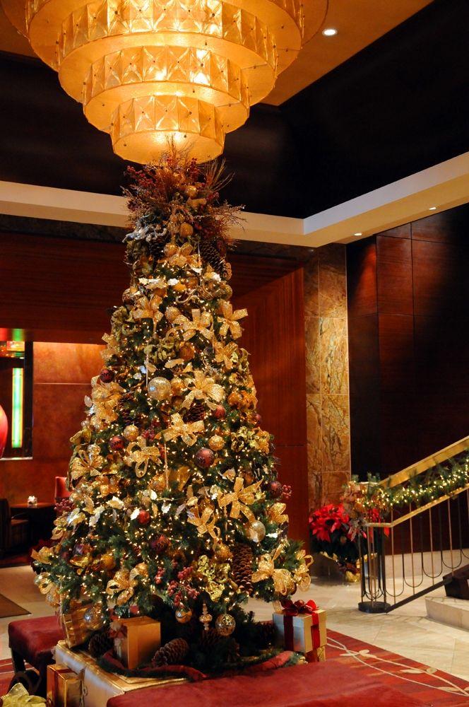 Christmas Lights Denver