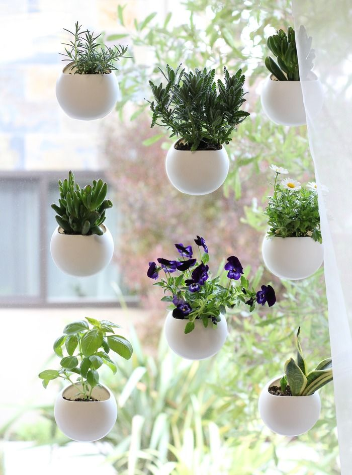 Hanging Window Sill Planters