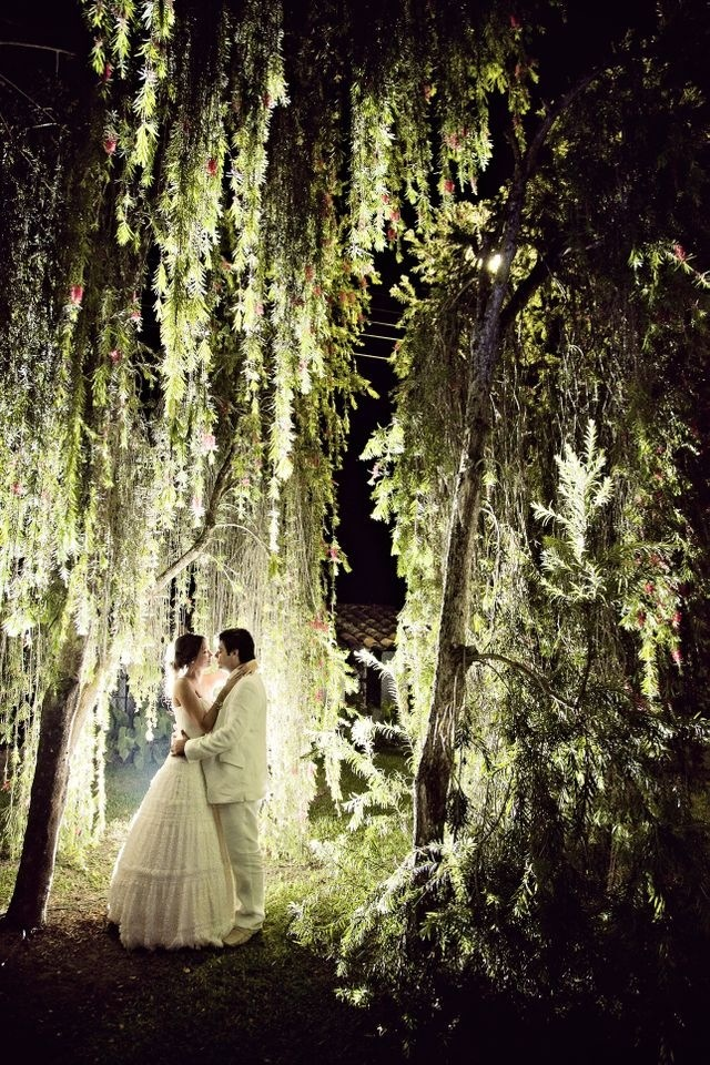 Under A Weeping Willow Tree Beautiful Beautiful Lighting Dream Weddings Pinterest