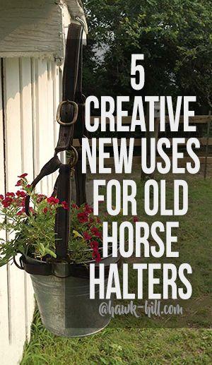 Horse Barn Great Ideas Creative