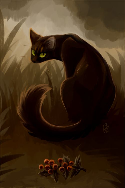 Paintings Warrior Cats Hollyleaf