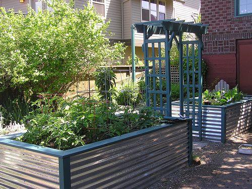 What Soil Use Raised Vegetable Garden