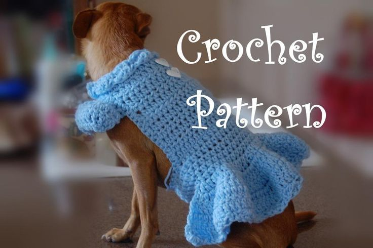 Knit Dog Sweater Printable Pattern