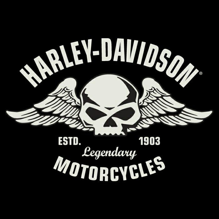 Black Davidson Harley And Logo And White Wings Bike