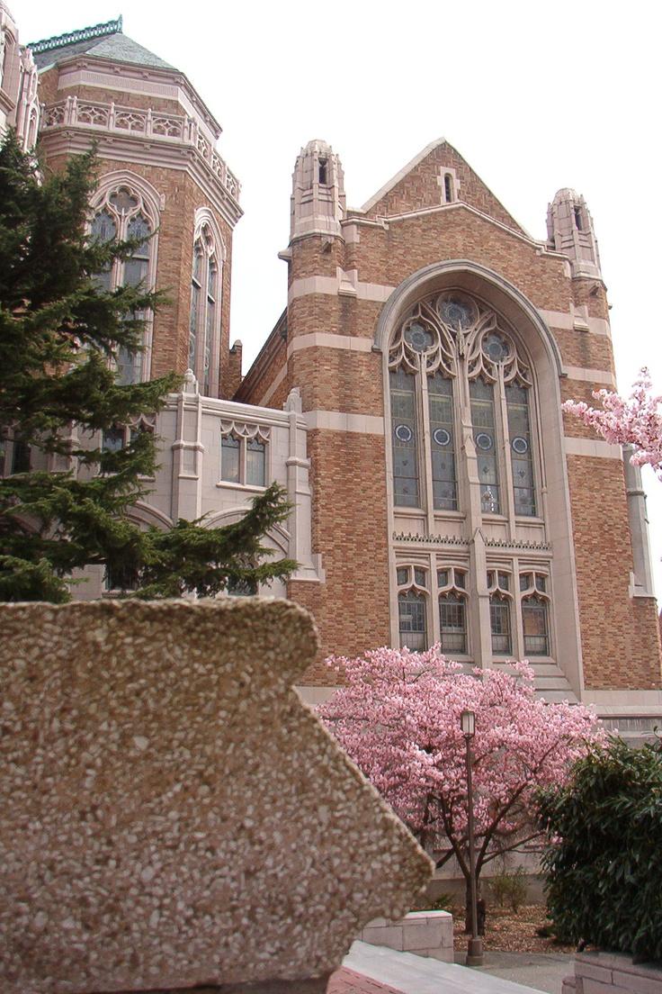 University Washington Fastpitch