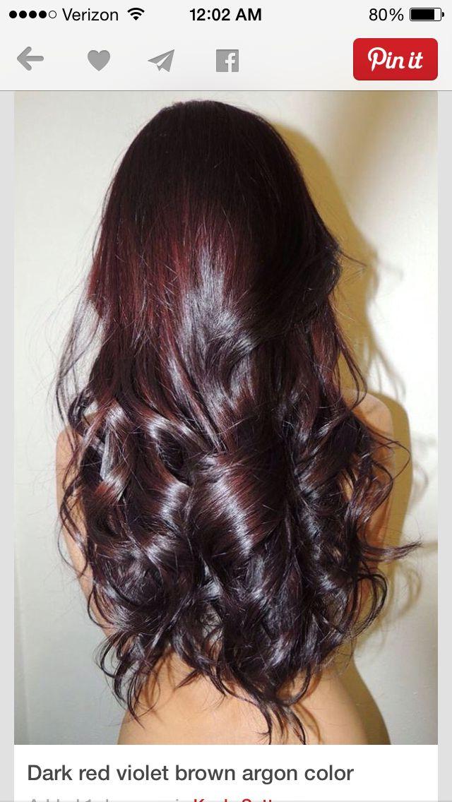 Ion Color Brilliance Medium Burgundy Brown Hair Color