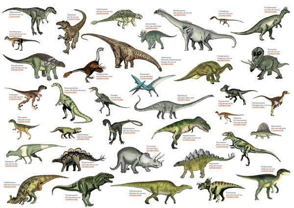 Common Dinosaurs Picture List