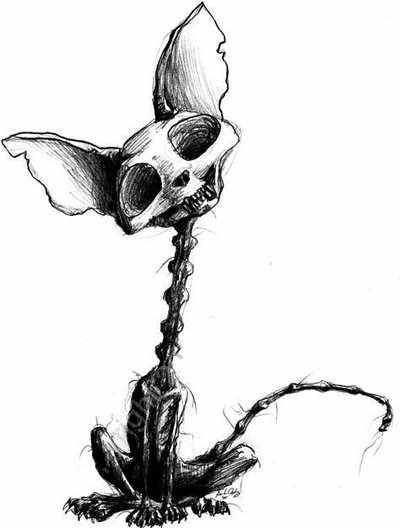 Cool Pen Drawings Animal Skulls
