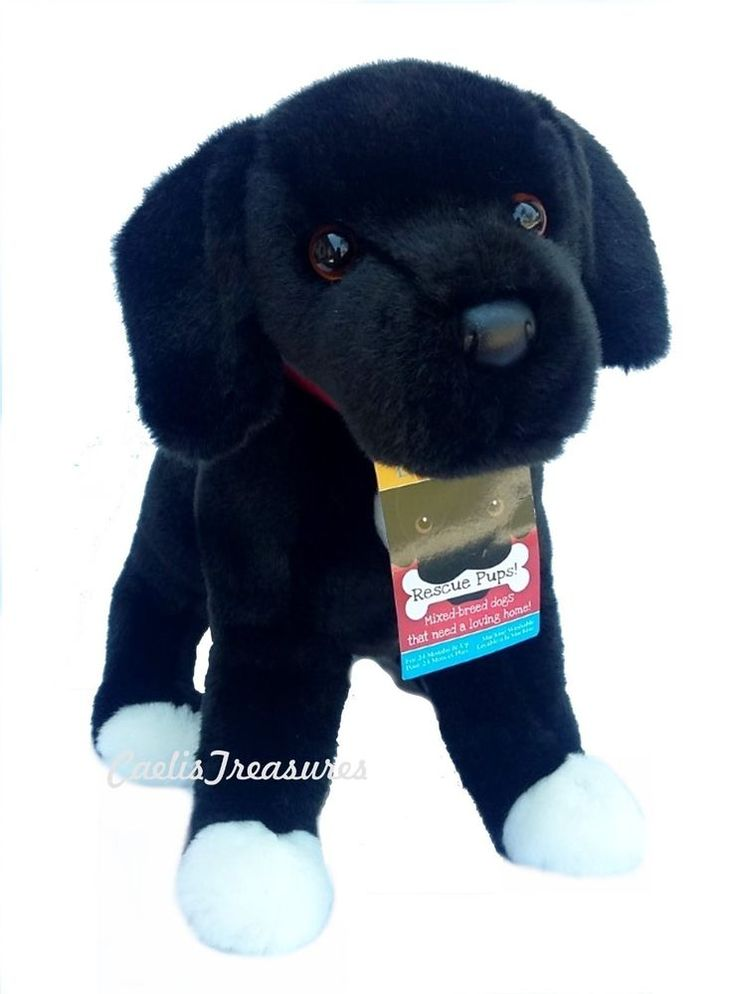 Images Justice Animals New Boo Stuffed Beanie