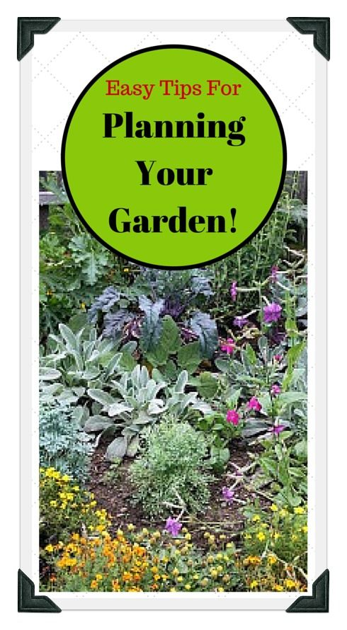 Vegetable Garden Layout Planner