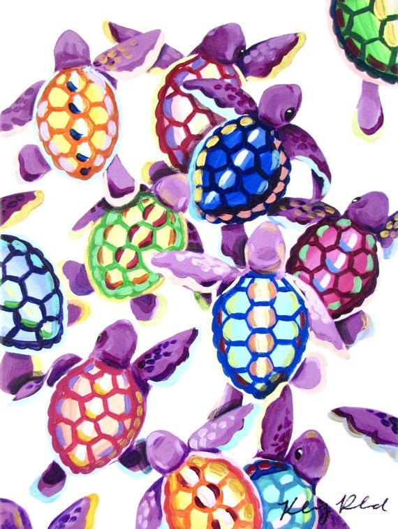 Colorful Baby Sea Turtles
