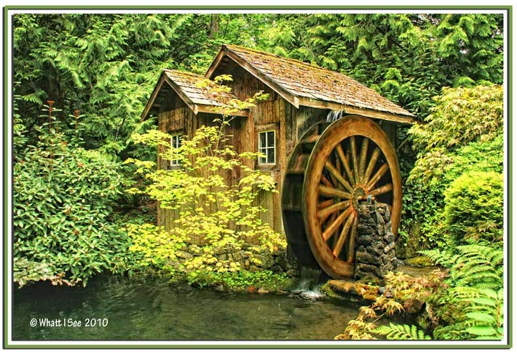 Diy Garden Shed Pinterest