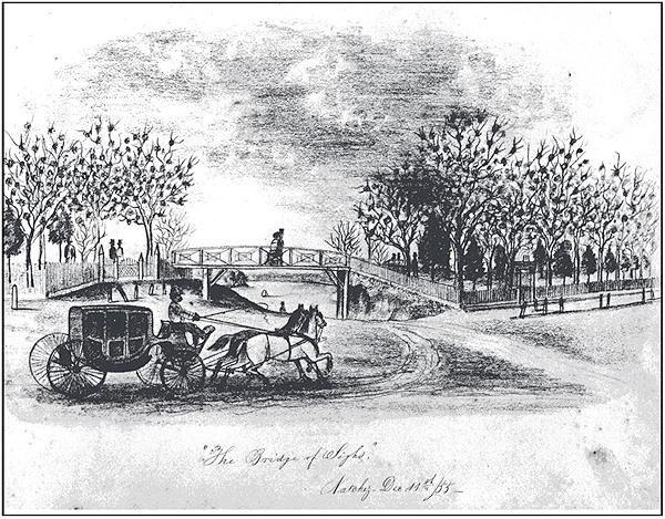 Henri Rousseau Charcoal Drawings