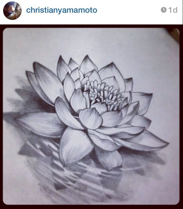 Japanese Water Lily Tattoo