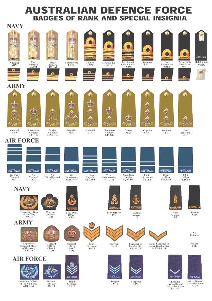 Us Navy Rank Structure Chart