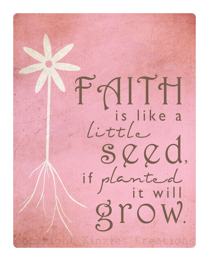 Bible Verses Seed Packets