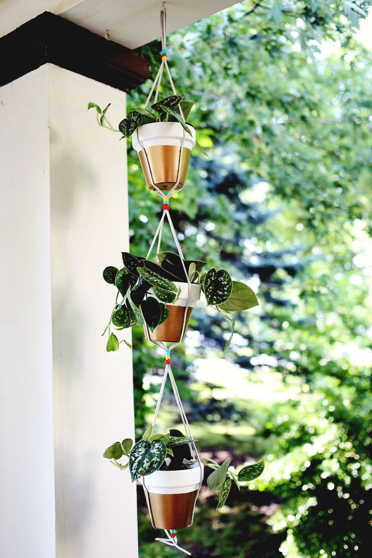 Wall Hanging Plant Pots