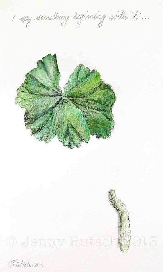 Sketches Leaves Water