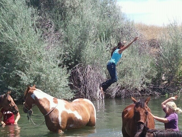 Horse Ranches Northern California