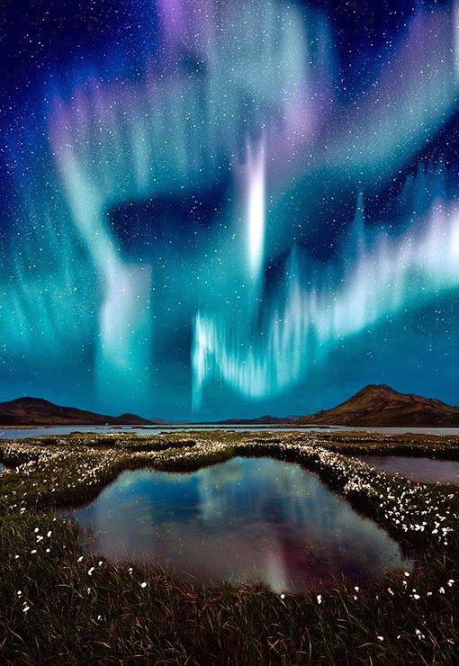 Northern Lights Cycle