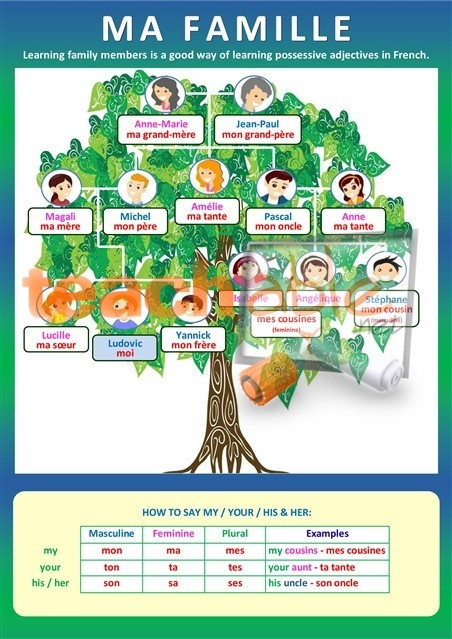 Project French Tree Family