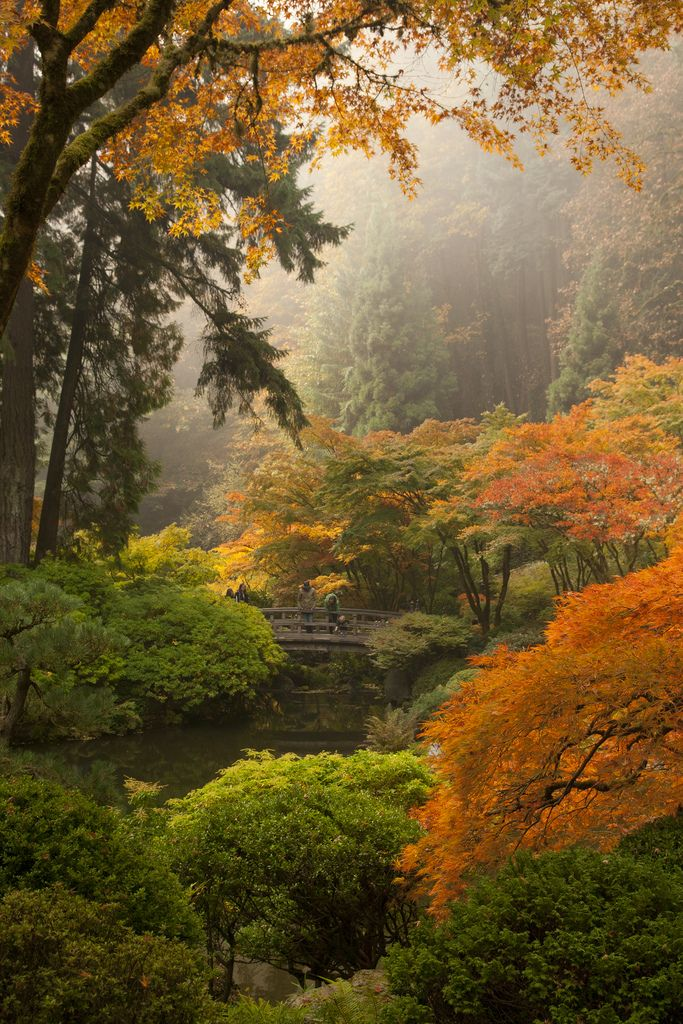 Best Japanese Garden Design Book