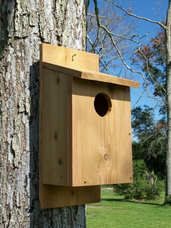 25+ best ideas about Owl house on Pinterest | Owl box, A ...