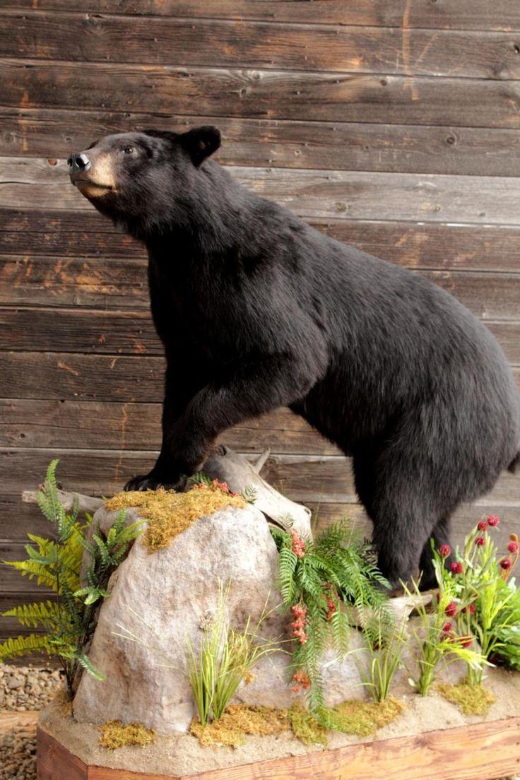 Black Wall Bear Decor Red