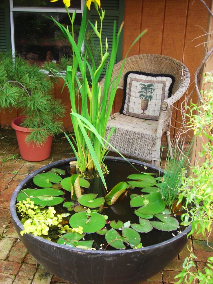Plastic Pond Plants