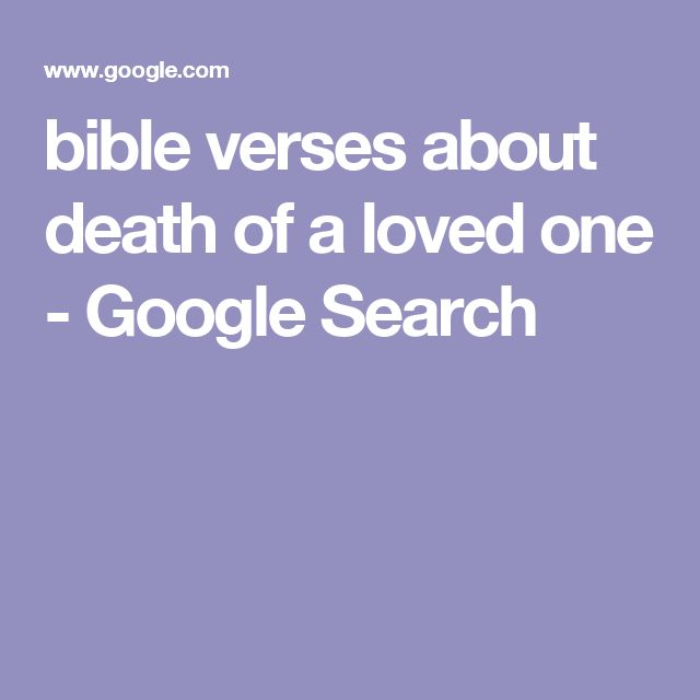 About Pets Verses Dying Bible