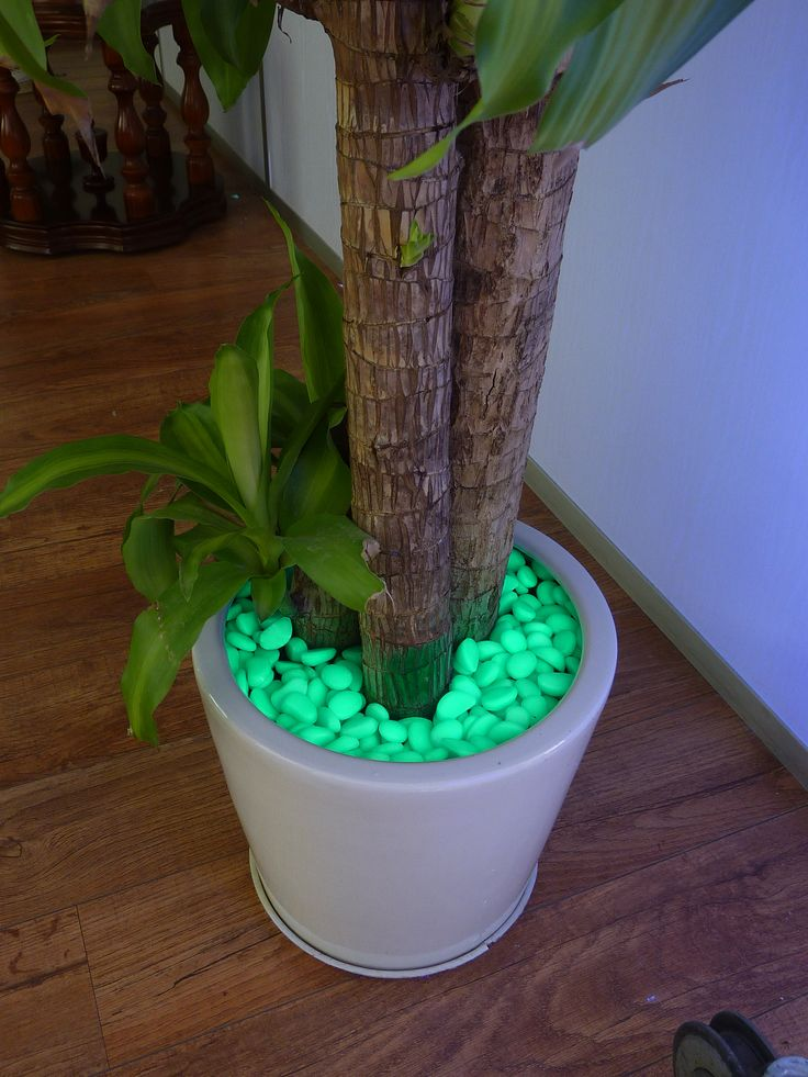 Glow Dark Pots Pinterest