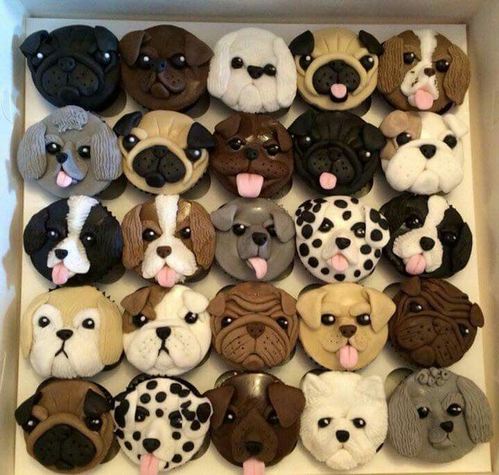 Most Amazing Cakes Of Real Puppy