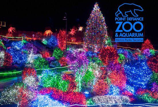Lights Wa Zoo
