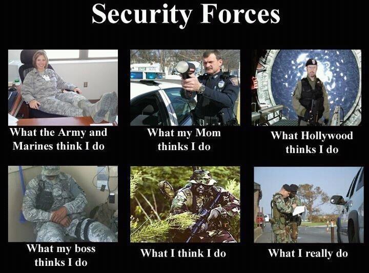 Private Security Vs Police
