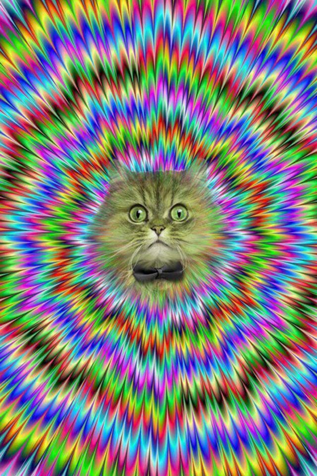 Eye Find Image Hidden Illusions