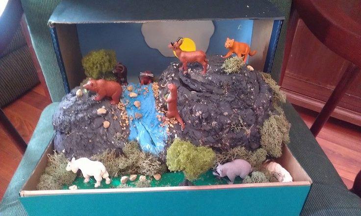 Habitats 3rd Georgia Science Grade