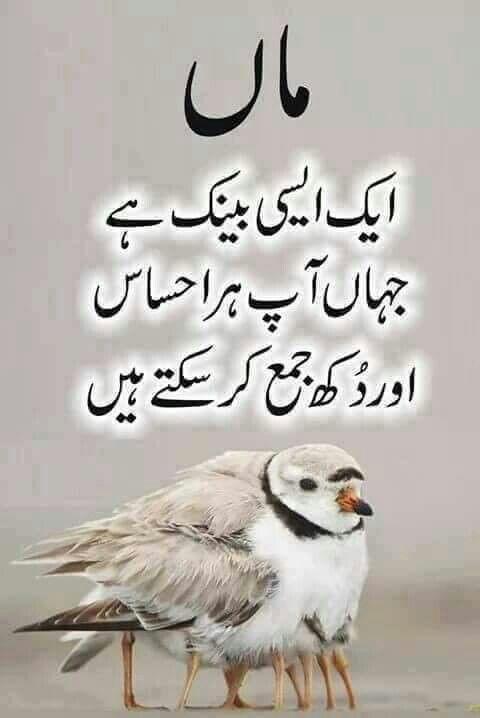 Quotes Patience About Urdu
