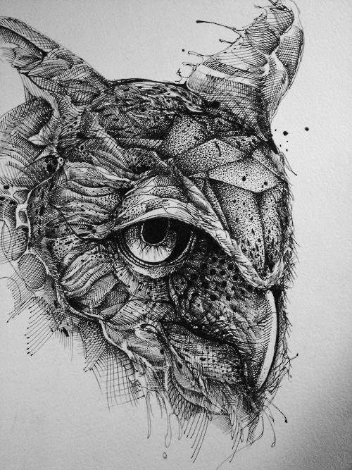 Ink And Pencil Drawings