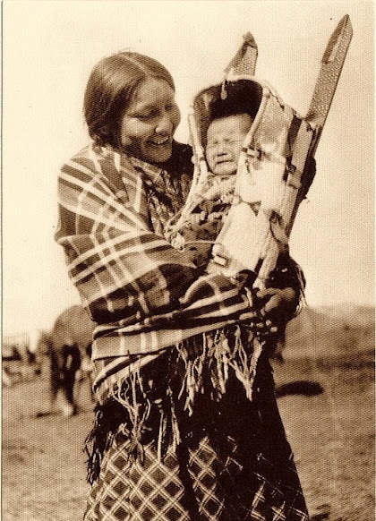 Cherokee Indian Beaver Wars