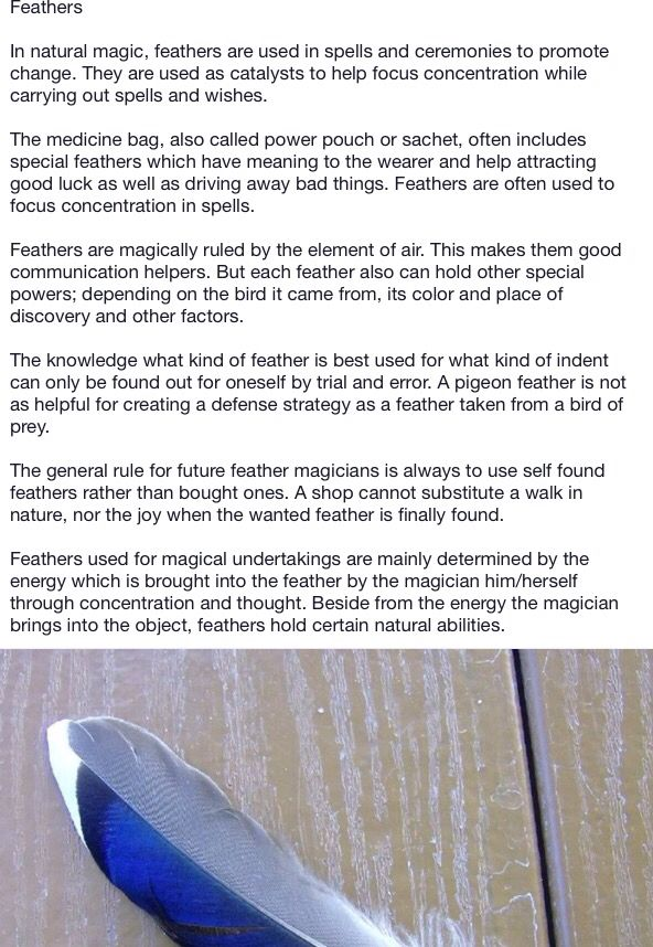 Finding A Black Feather Symbolism