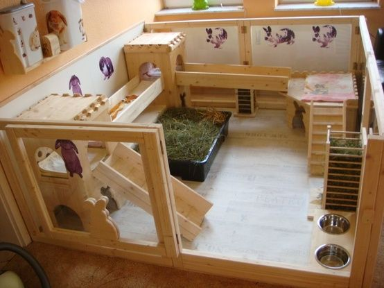 Indoor Pen House Rabbit