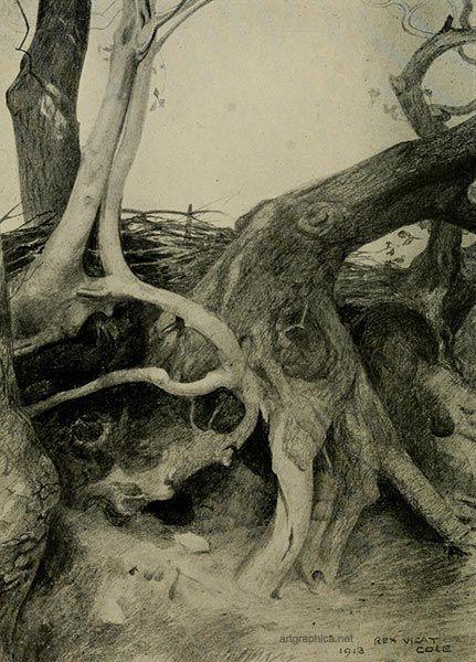 Landscape Design Drawing Techniques