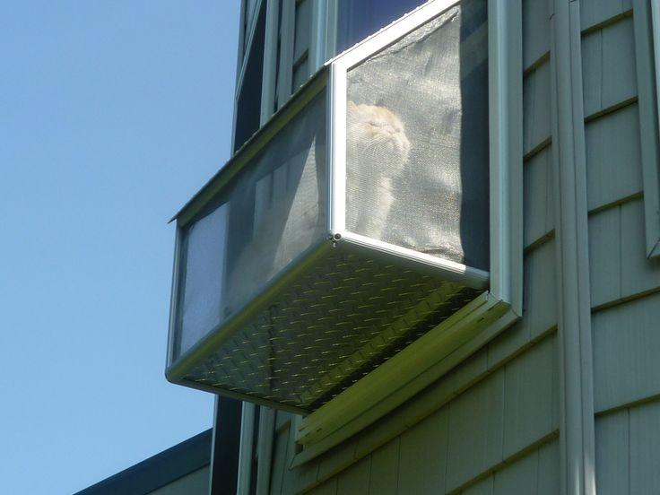 Cat Window Box Outside View 80 20 Animal Planet