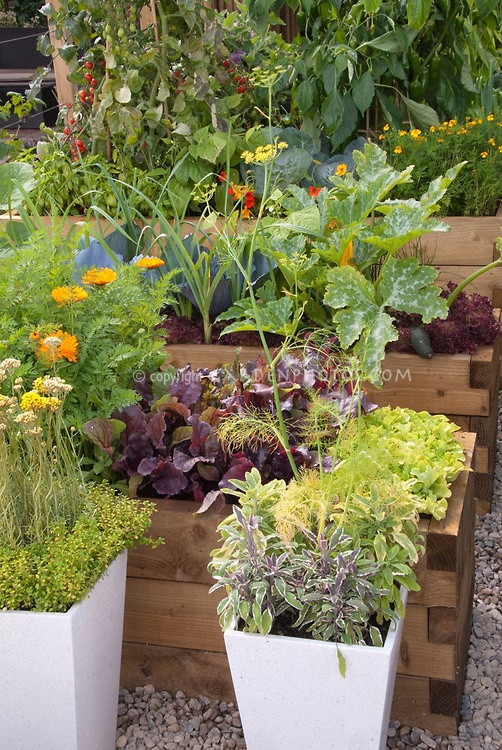 Raised Vegetable Garden Containers